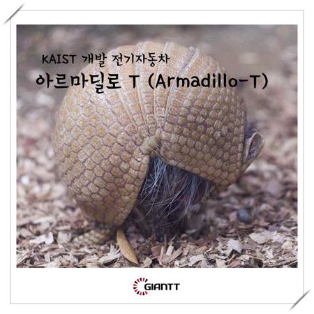 아르마딜로T