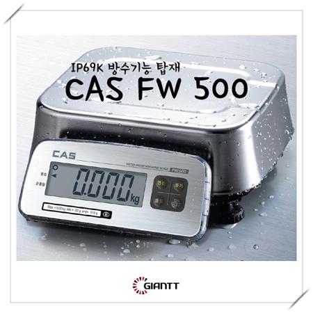 CAS_FW500